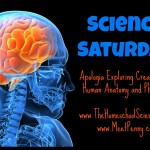 Science Saturday – Blood